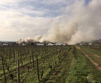 Die Rauchschwaden über den Weinbergen