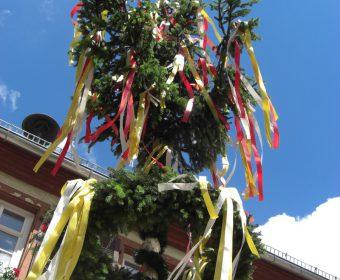 Der geschmückte Baum vor dem Rathaus