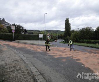 Dieselspur Kreuzung2