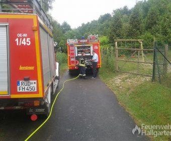 Einsatzfahrzeuge von der Feuerwehr Hallgarten