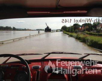 Person im Rhein bei Hochwasser Ausblick vom LF-16-TS