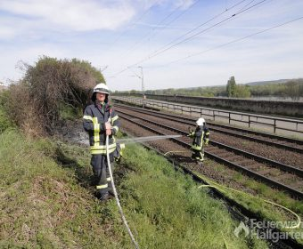 Löschangriff brennender Bahndamm4