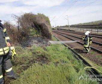 Löschangriff brennender Bahndamm3
