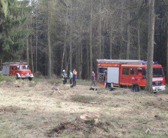 Einsatzfahrzeuge der Feuerwehr Hallgarten
