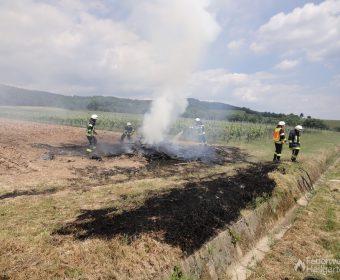 Feuer in den Weinbergen